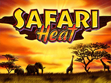 Автомат Safari Heat в клубе Вулкан 777
